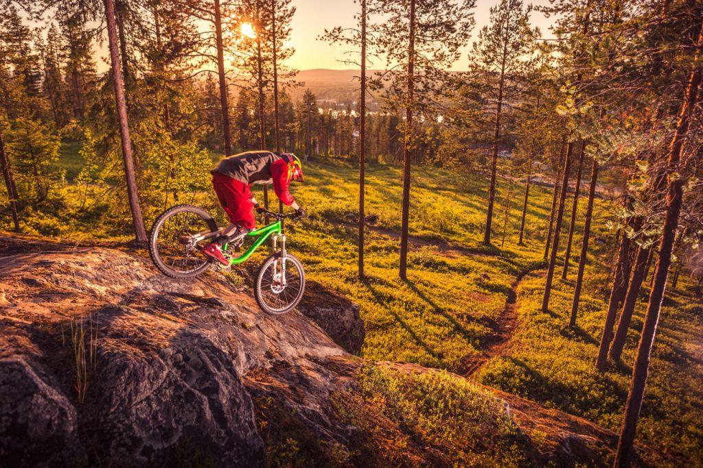 Mountain biking through Lapland forest in summer
