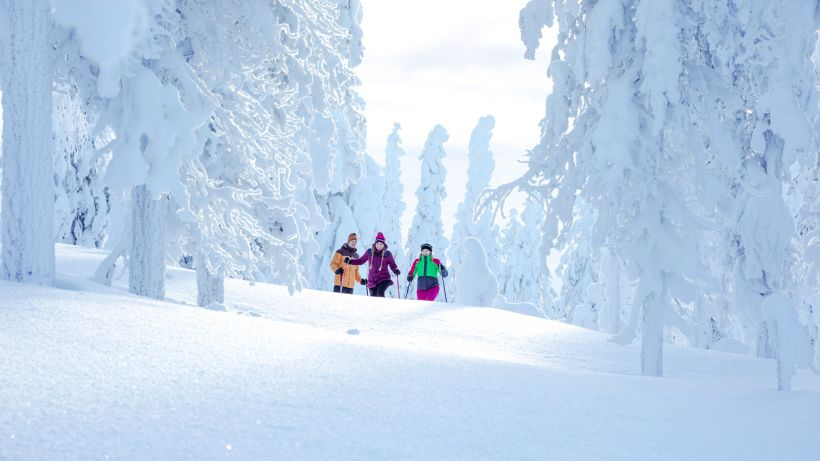 Snowshoeing trip to Sodankylä, Finland