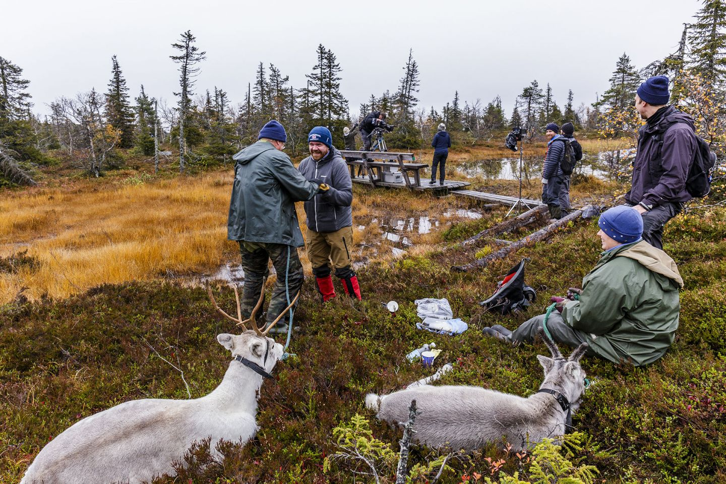 A Reindeer's Journey crew in Lapland