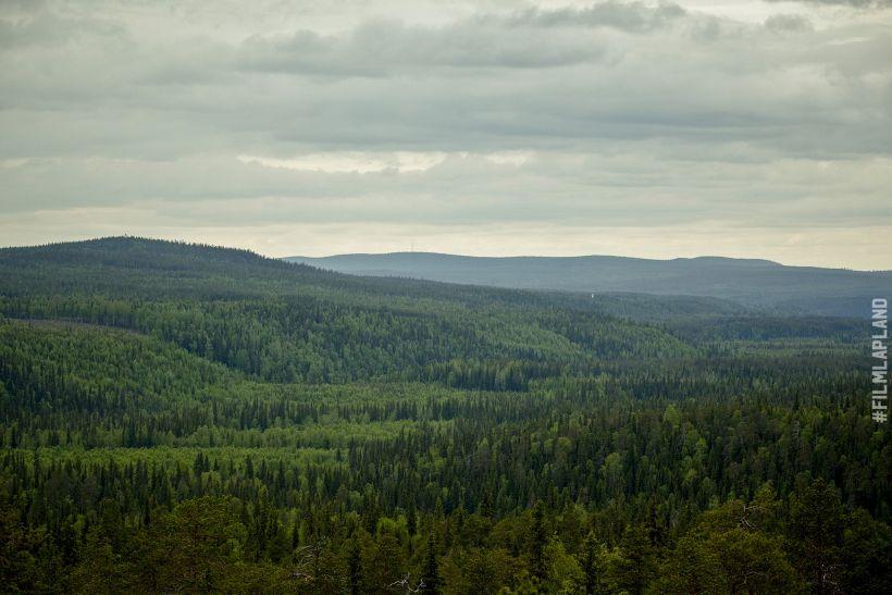 green hills in summer in Rovaniemi, Finland