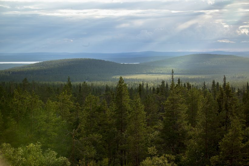 Sun rays touching the endless wilderness in Sodankylä, Lapland