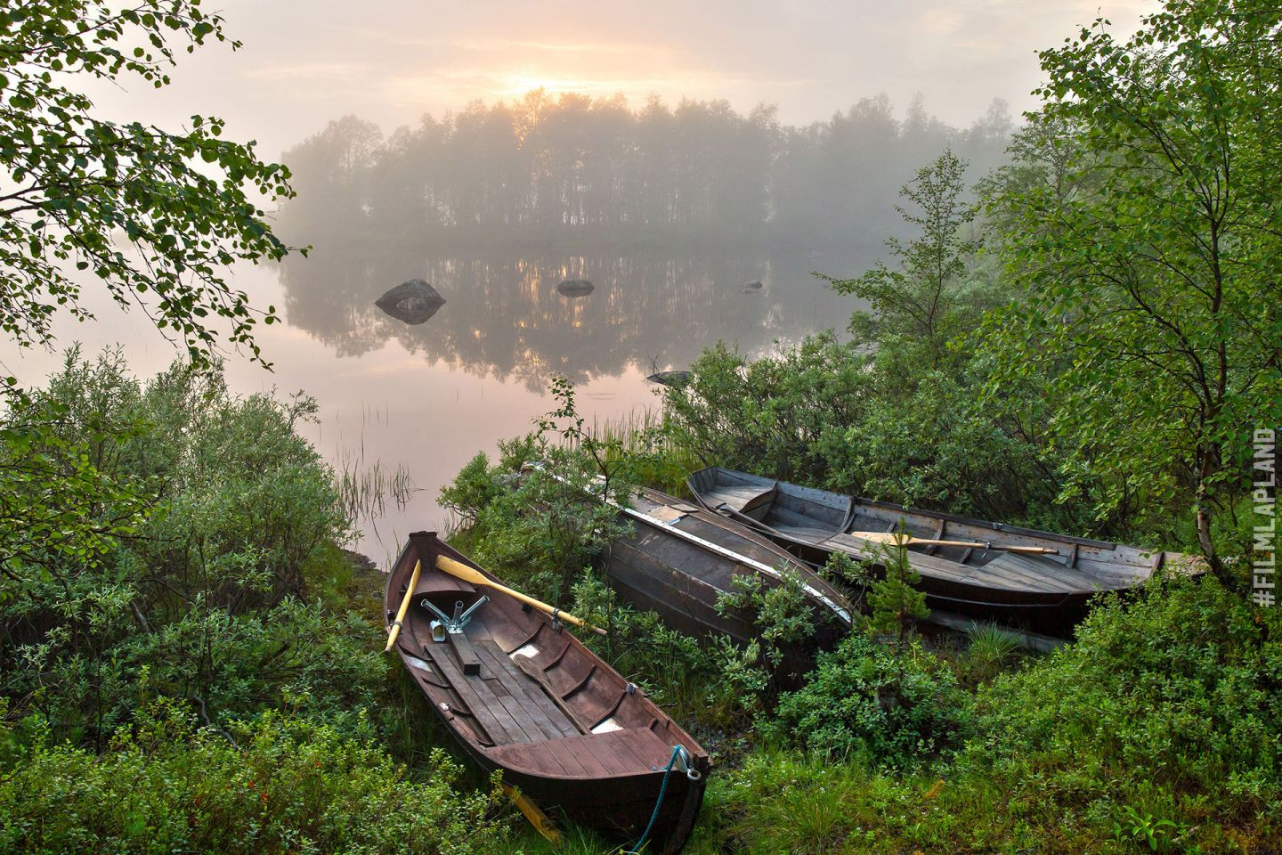 A pair of empty rowboats and the summer sun low behind distant trees