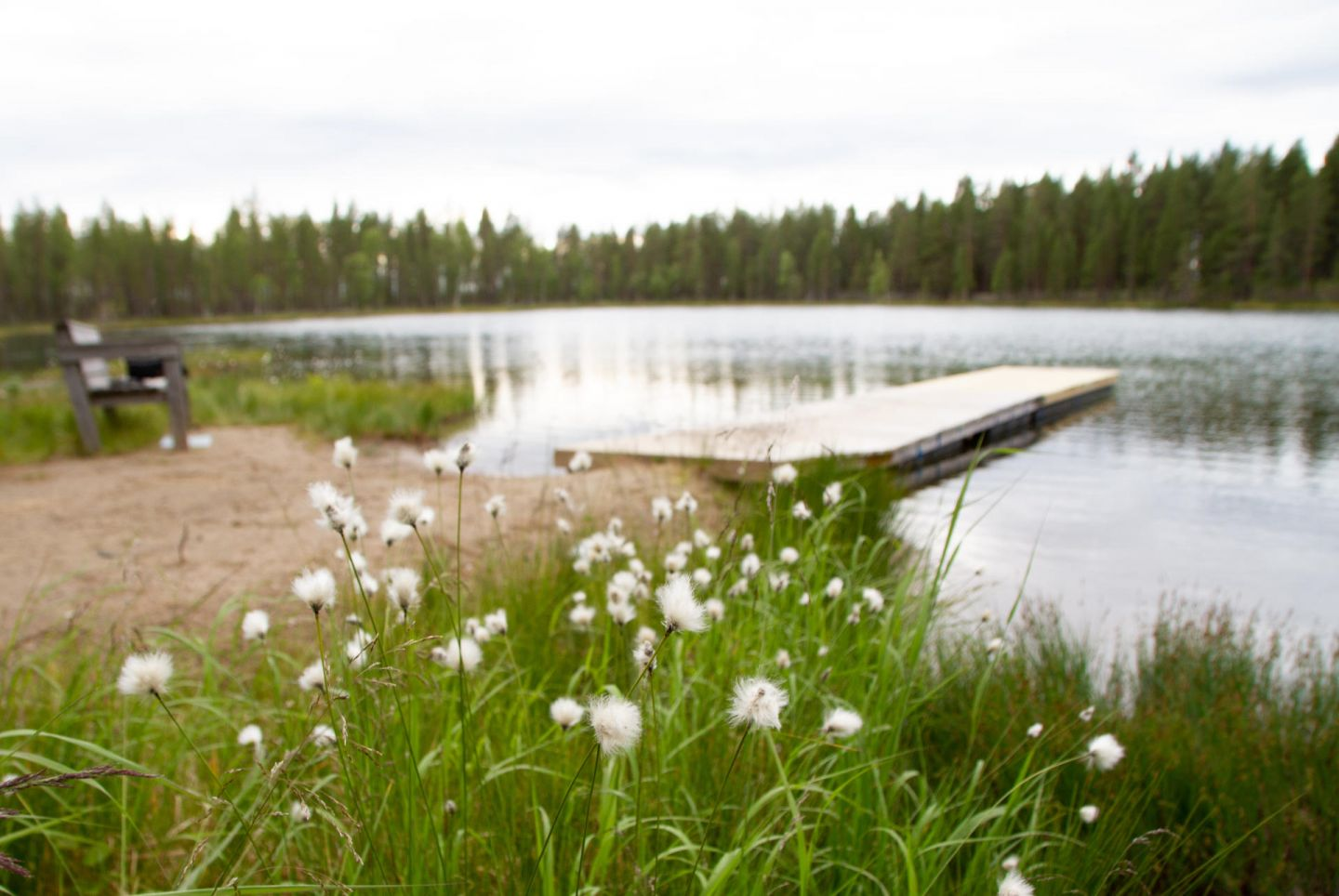 dock and beach in salla | beaches in finland