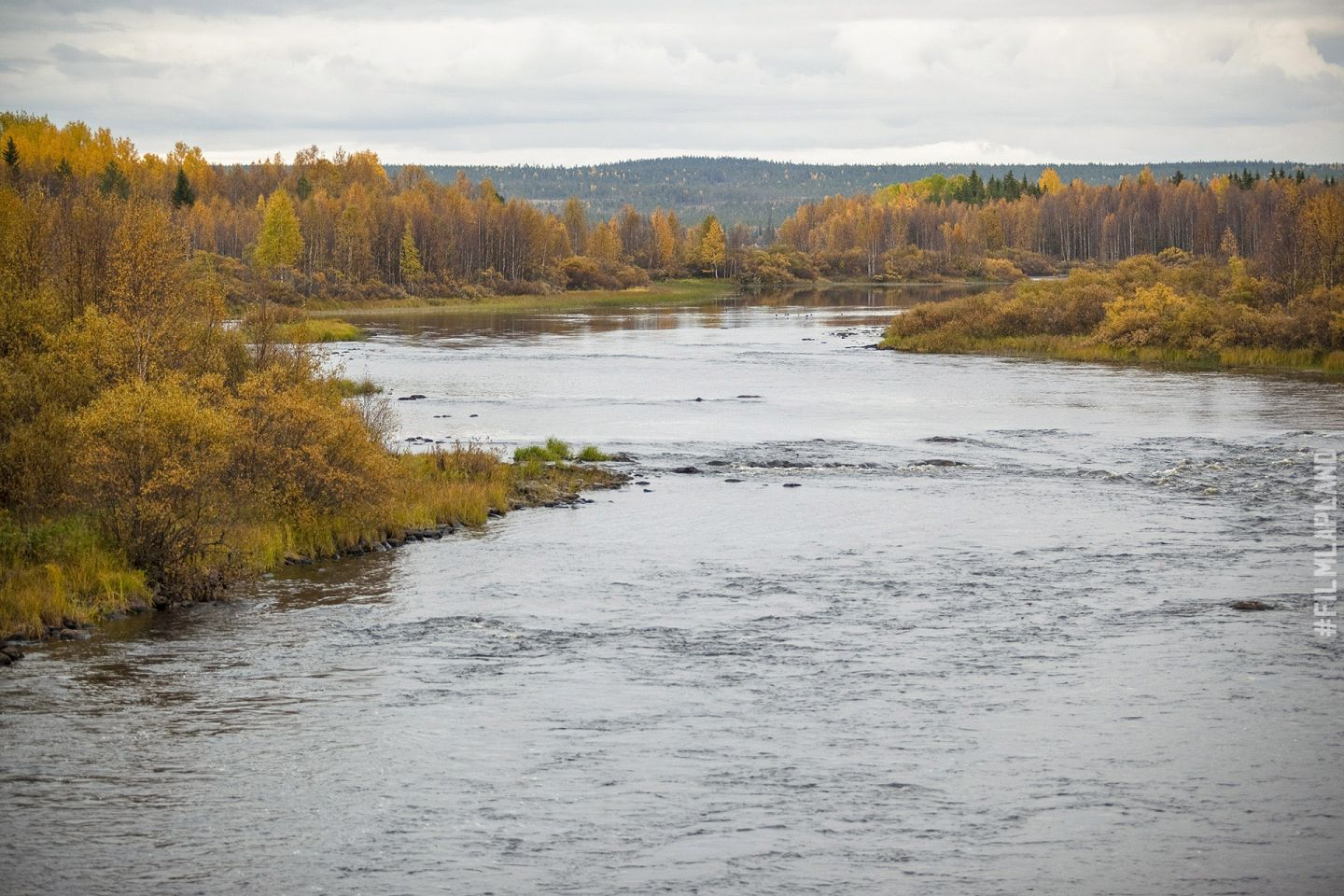 river and forest in Rovaniemi, Finland in autumn