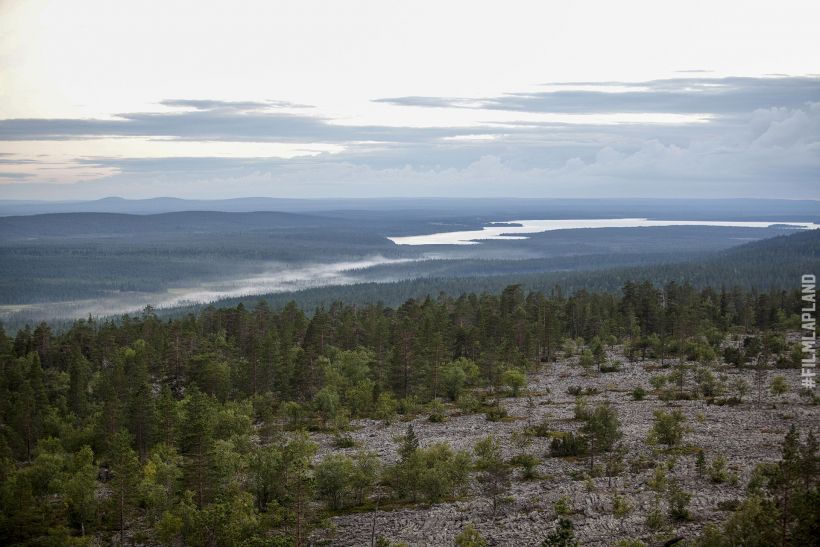 Aerial of Arctic forest in Sodankylä, Finland