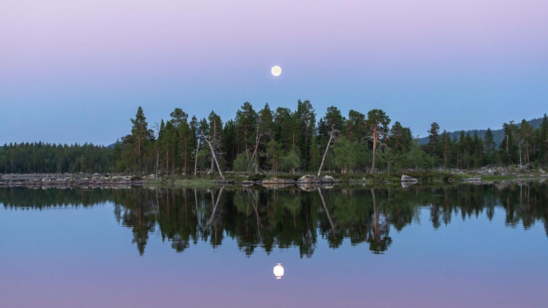 still lake in summer