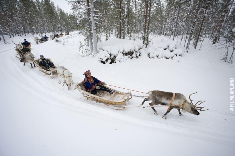 Sámi reindeer sleigh ride in Rovaniemi, Lapland