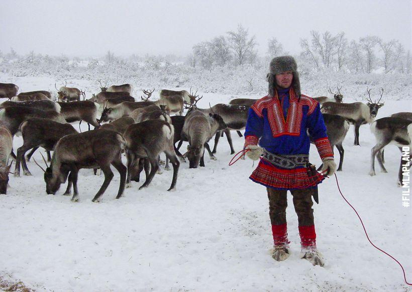 Sámi reindeer herder in Lapland