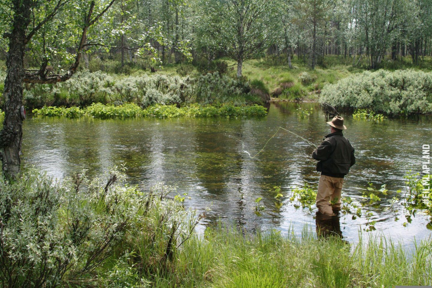 Fly-fishing in a Lapland forest
