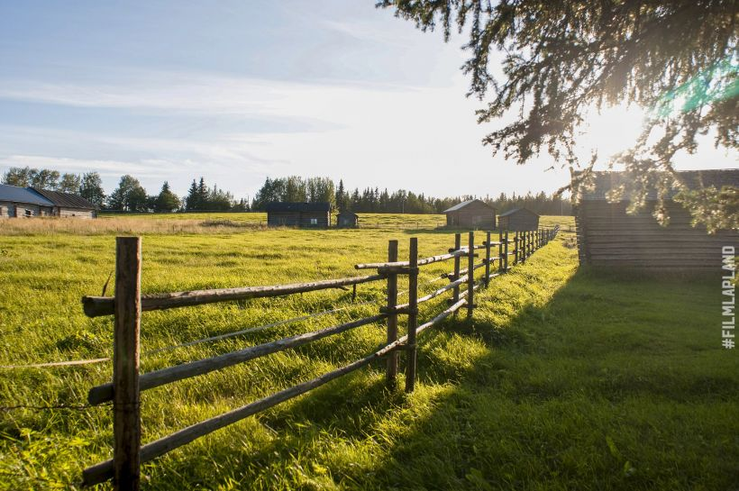 Finnish farm, with field and fence
