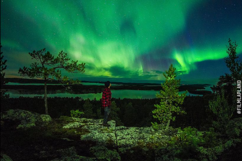 Northern Lights over forest in Lapland