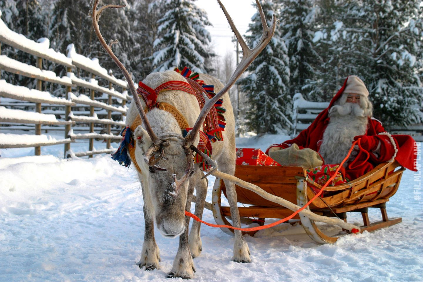 Going for a reindeer sleigh ride with Santa in Rovaniemi, Finland