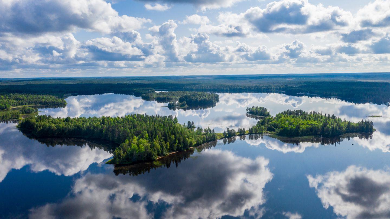 still summer lake