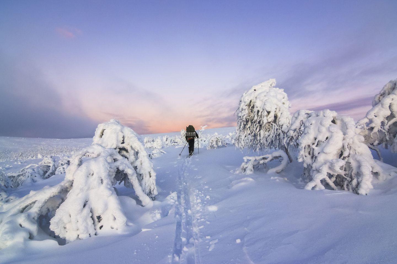 Skiing in silence in UKK national park in Sodankylä, Lapland