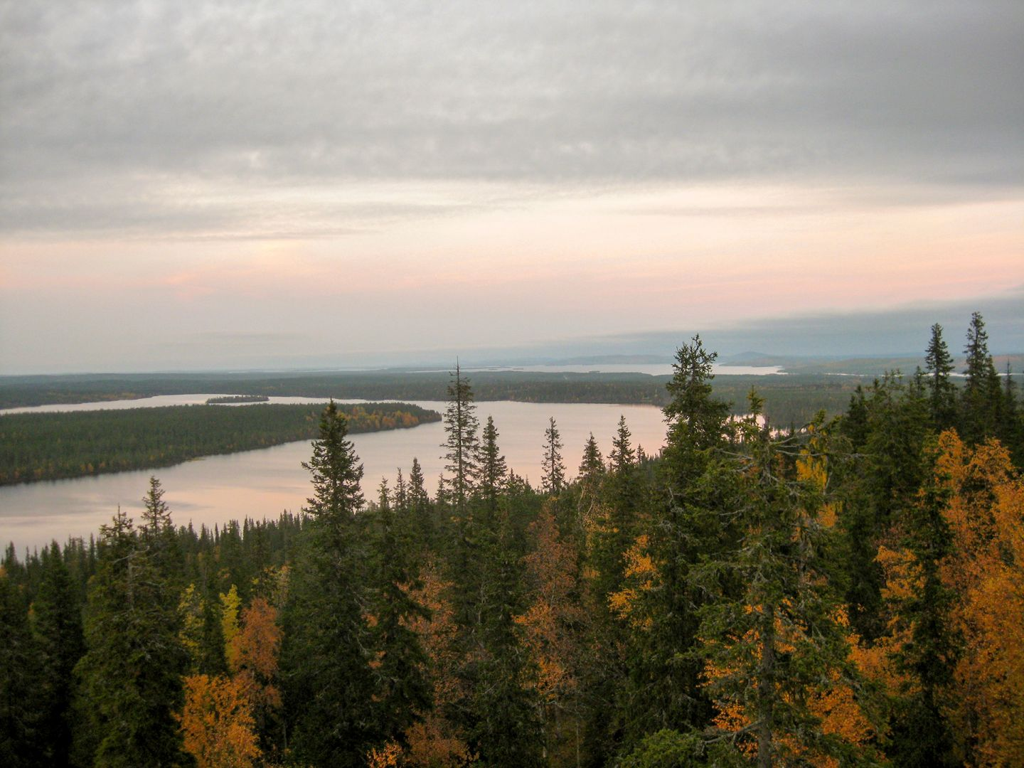 River and autumn colors in forest in Posio, Finland