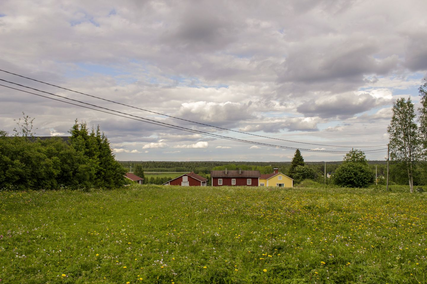 Countryside in summer in Kittilä, Lapland