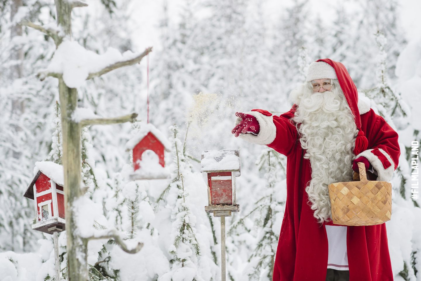 Santa Claus feeding birds in Rovaniemi, Finland