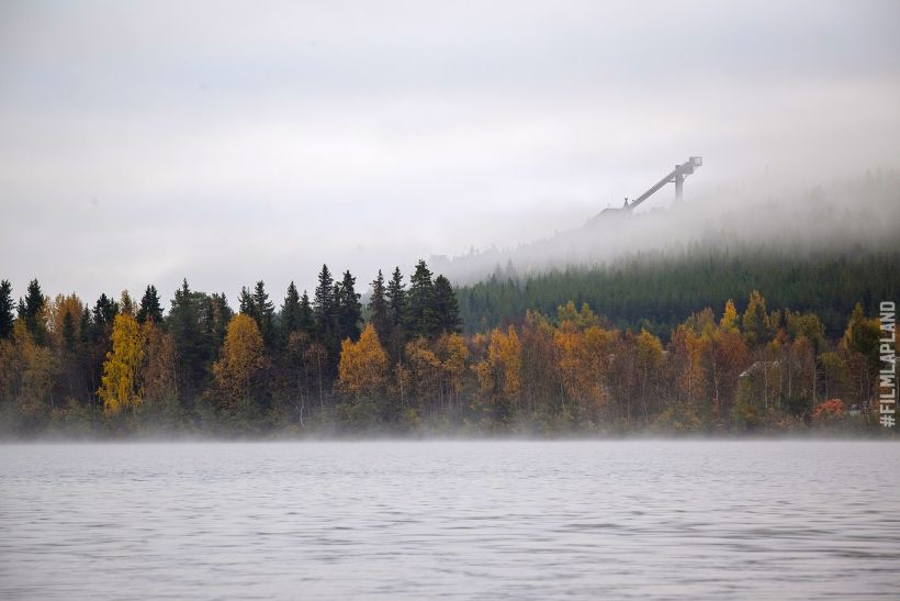 misty forest in Rovaniemi, Finland in autumn