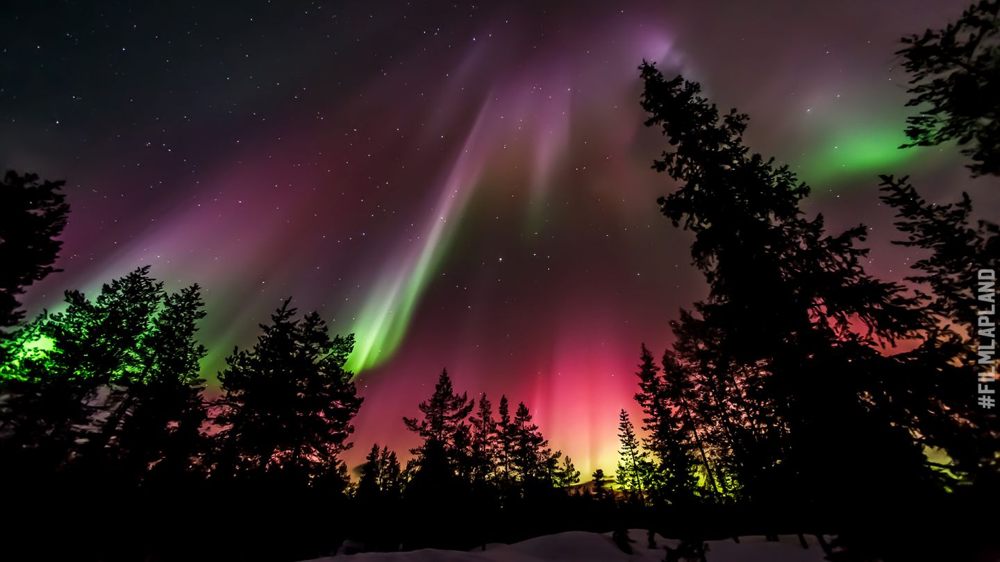 Pink, Purple and green northern lights in Lapland, Finland
