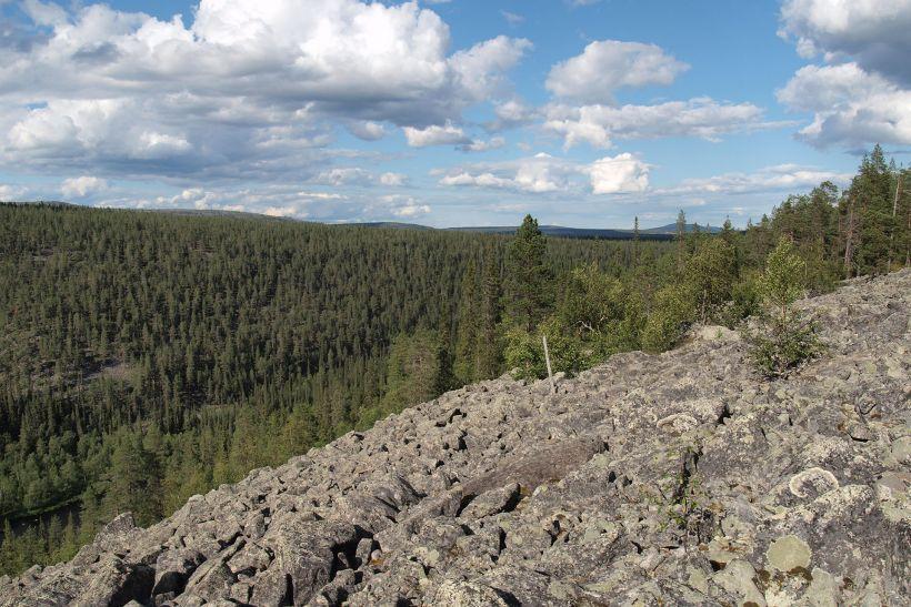 stone field and coniferous forest in Savukoski, Finland