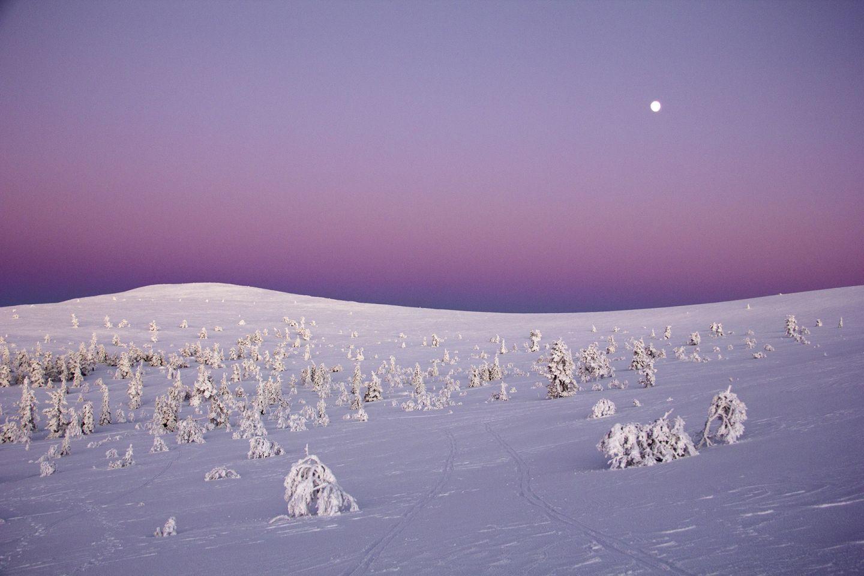 Finland National Park | Pallas-Ylläs, Lapland