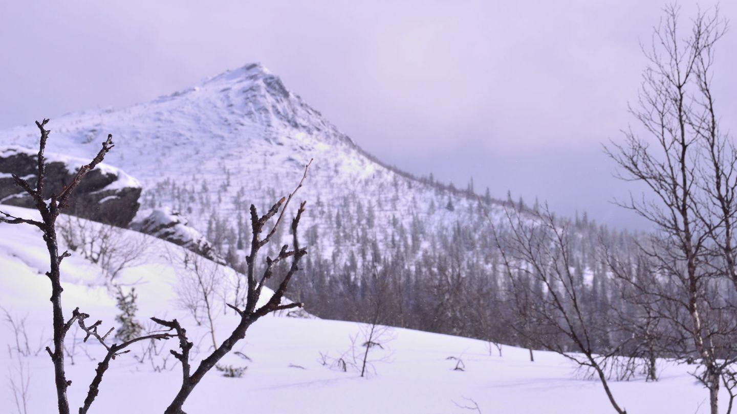Korvatunturi fell during spring winter in Savukoski, Finnish Lapland.