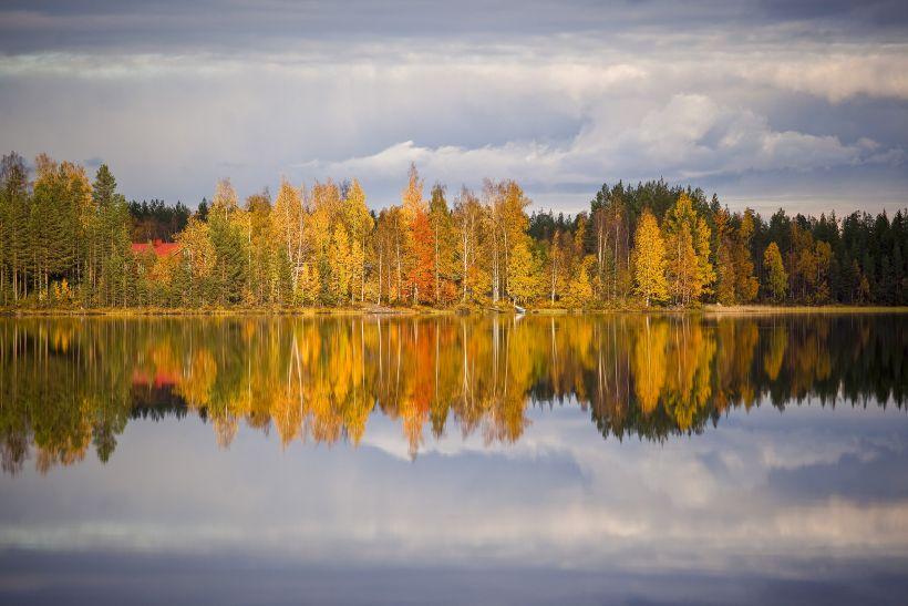 reflection of forest in river in Rovaniemi, Finland in autumn