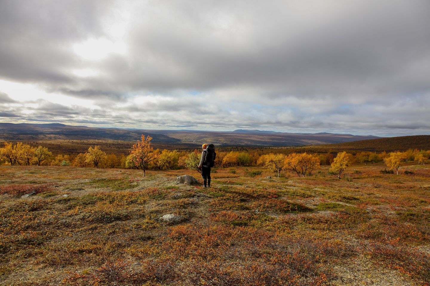 Hiking in tundra forest in Utsjoki, Finland