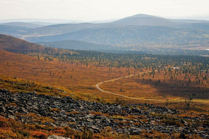 Autumn colors in Pallas, Finland