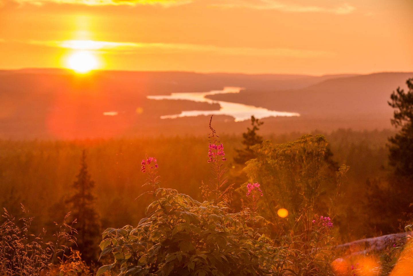 The view from Kuninkaan Laavu in Rovaniemi, Lapland in autumn