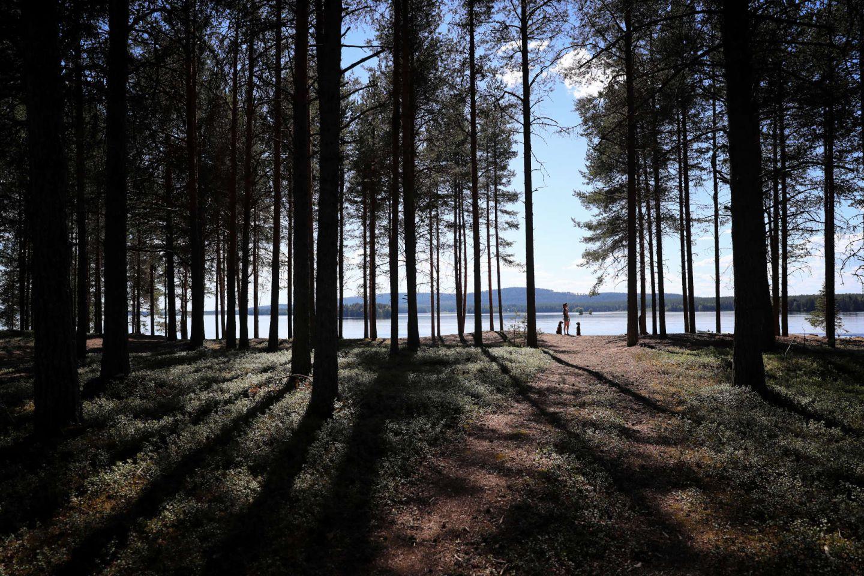 At the beach in Kemijärvi, Finland in summer
