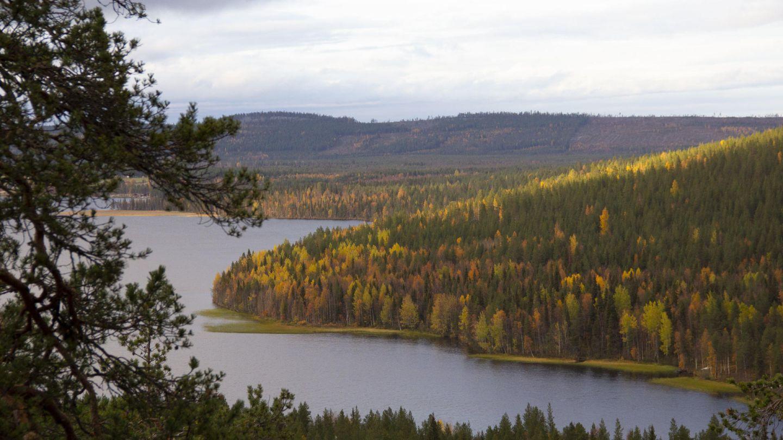 Autumn vista of Finnish Lapland