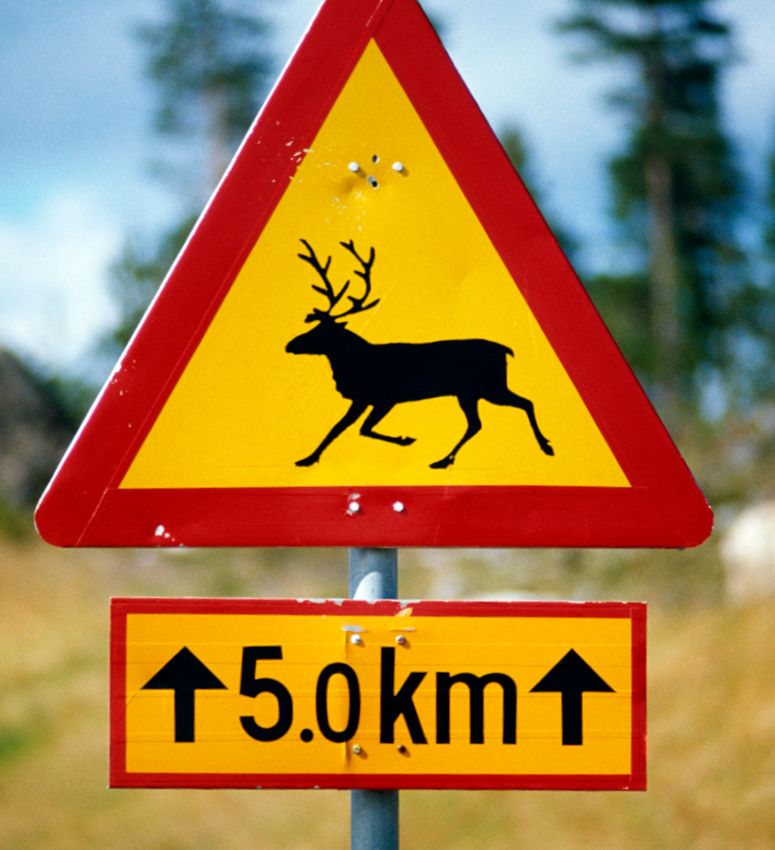 reindeer road sign in Lapland, Finland