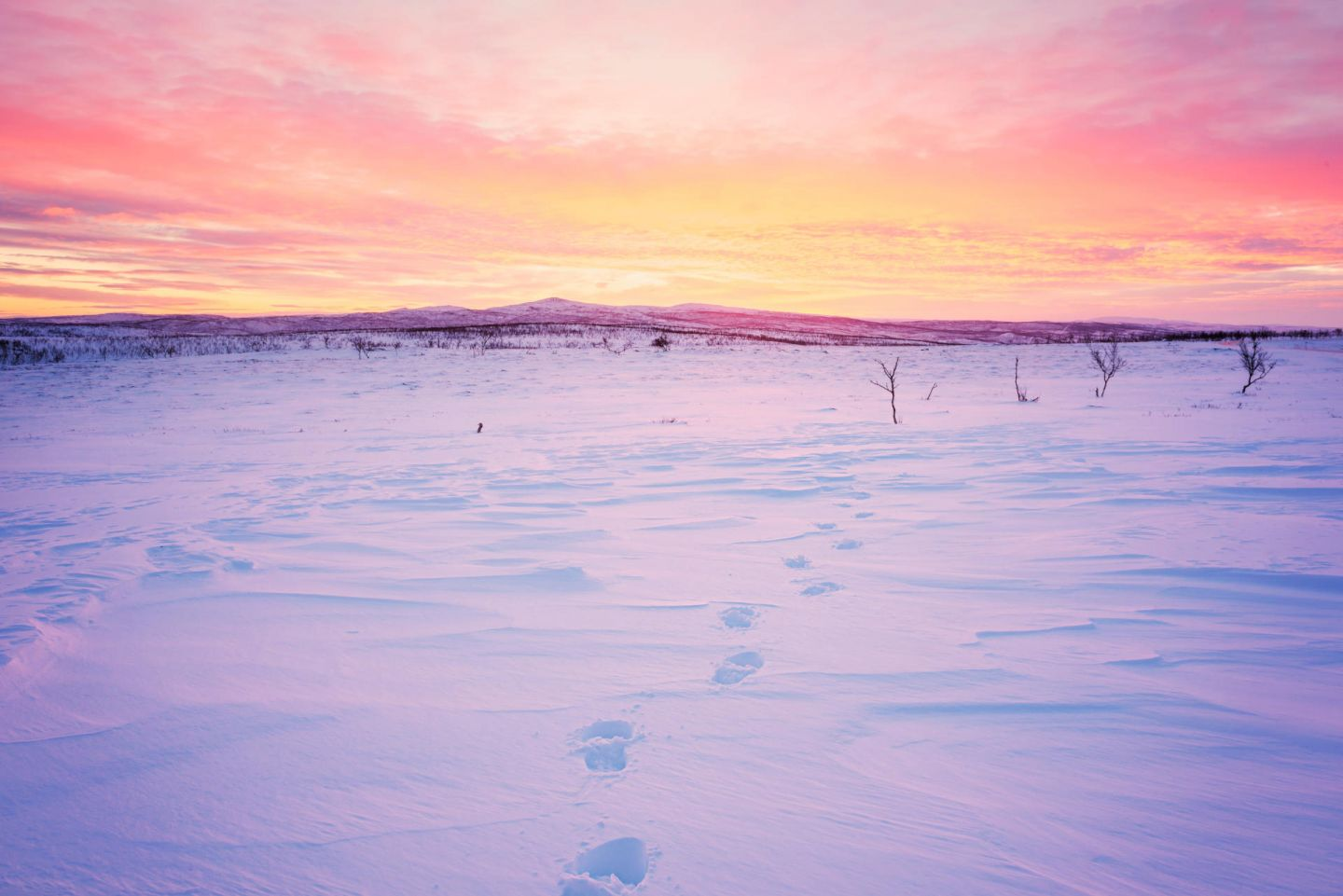 Footsteps in the snow in Nuorgam, Lapland at sunset