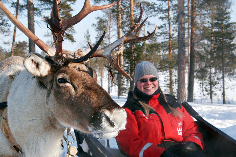 Enjoying a reindeer ride in Lapland