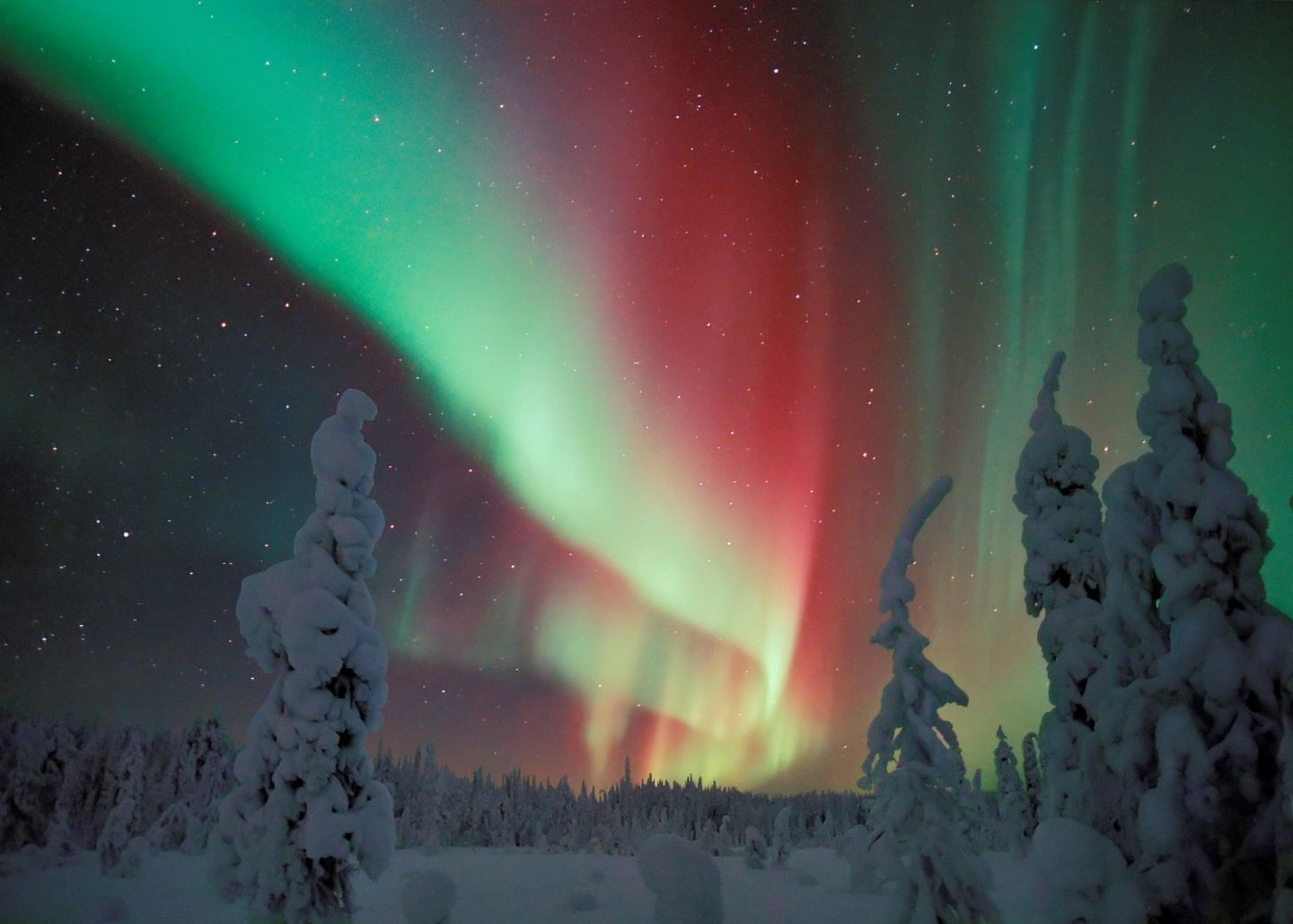Northern Lights above northern Finland in winter