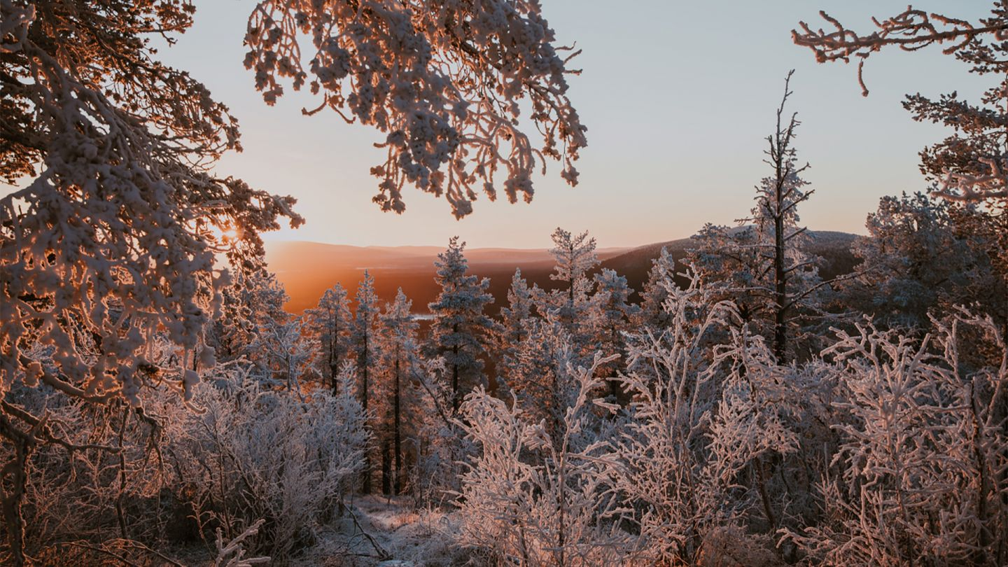 Lapland Winter Photography, Levi, Polar Night