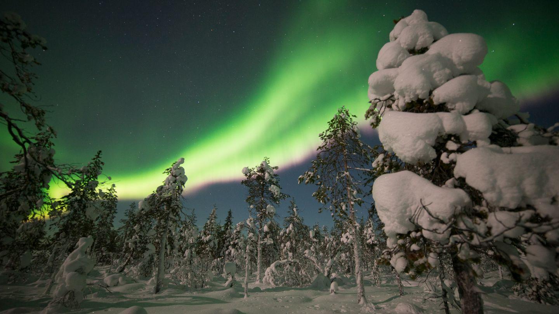 Northern Lights in Levi, Snow Flower, Finland Lapland