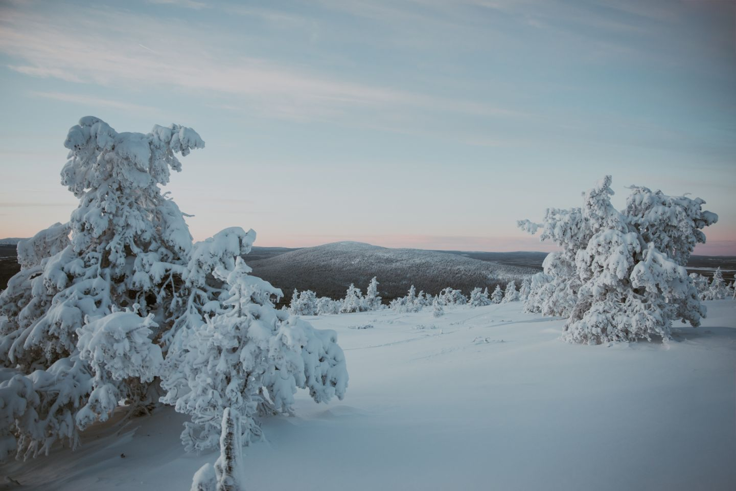 Arctic landscape, Lapland Winter Photography, Levi, Polar Night