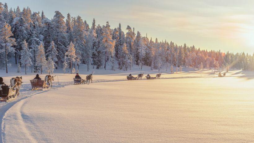 Salla Reindeer Park, Lapland Winter Bucket List