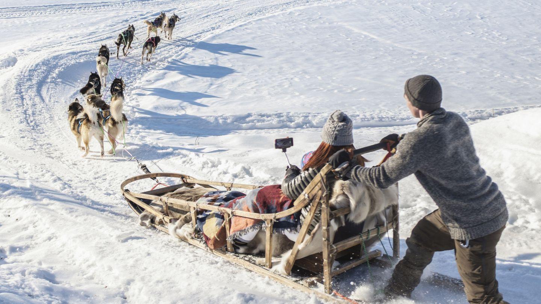 dog sledding rovaniemi lapland