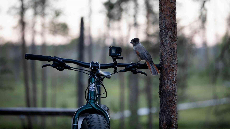 Summer biking, Lapland Finland