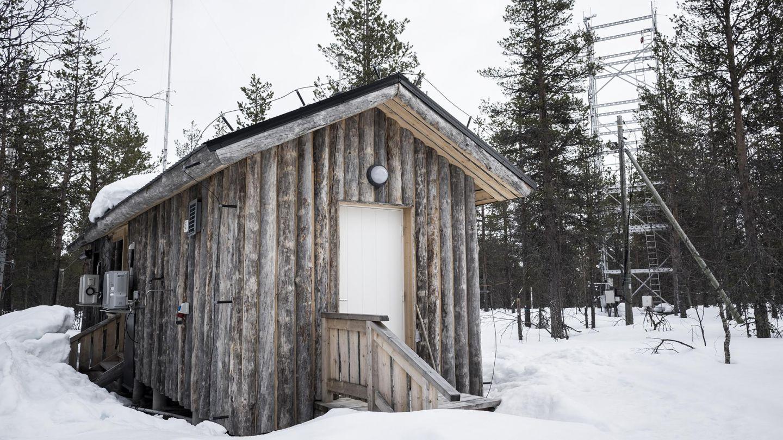 SMEAR-asema Värriön luonnonpuistossa