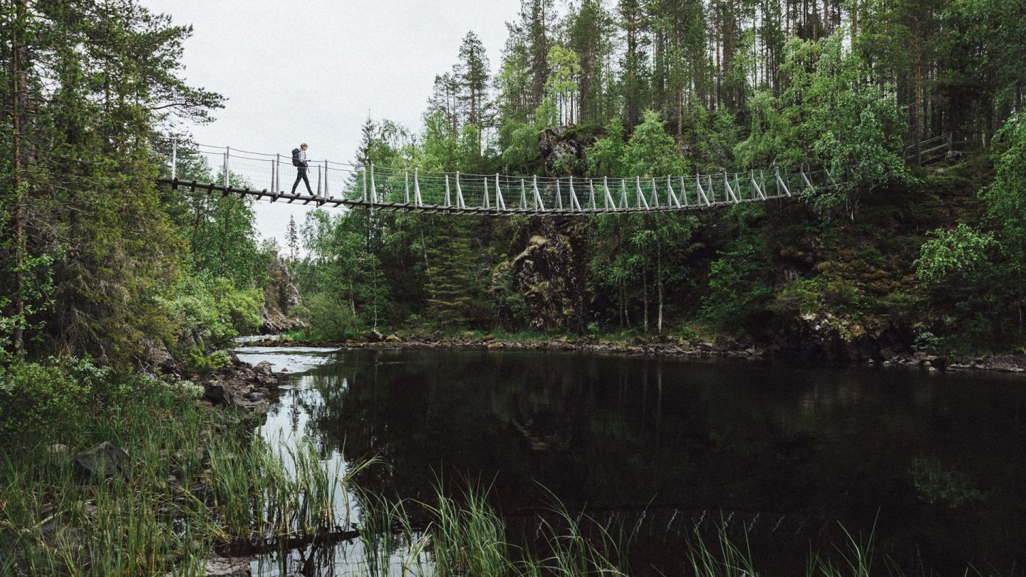 Hiking in Lapland, bridge