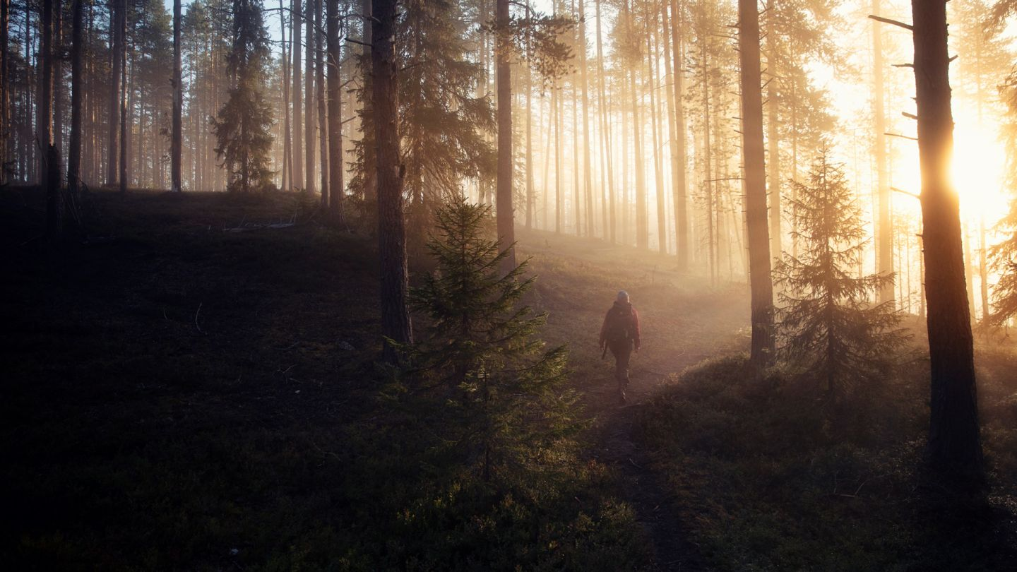 Hiking in Lapland in misty morning