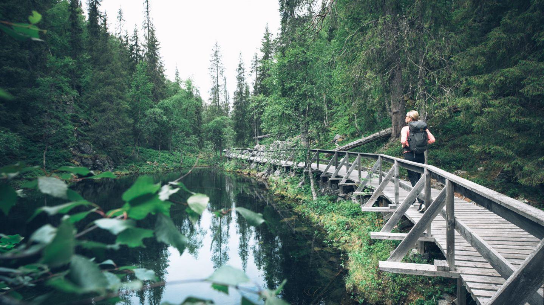 Pyhä-Luosto, beginner hiking Lapland, Finland