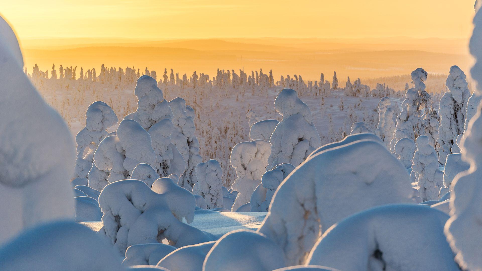 Lapland seasons, Winter Frost