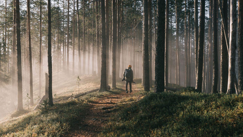 Beginner hiking Lapland, Finland