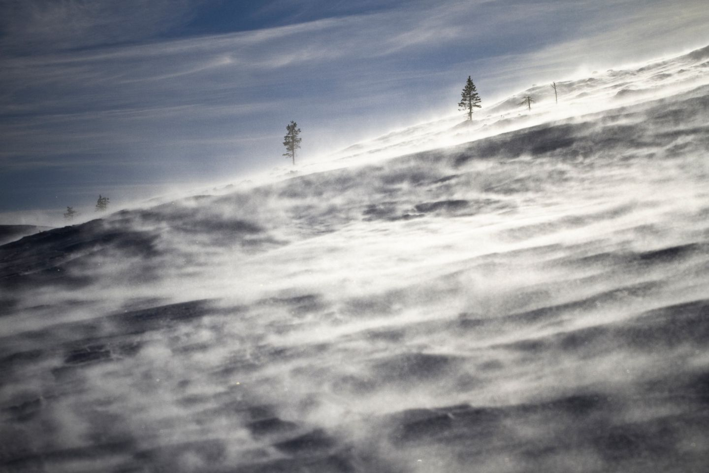 Winter storm on a Lapland fell