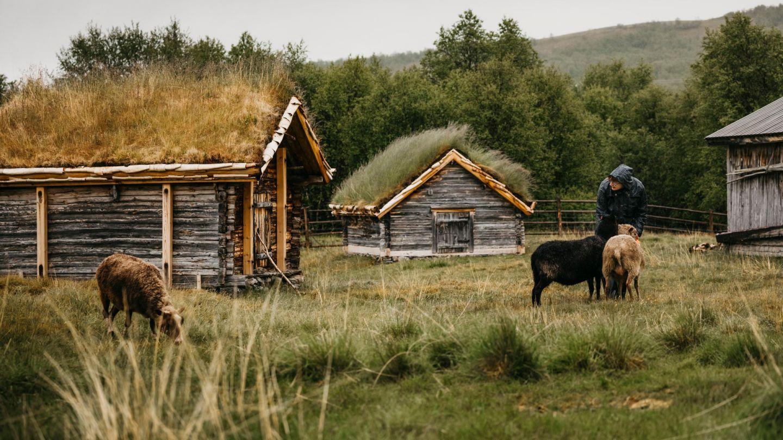 Välimaa farm, Utsjoki Bucket List